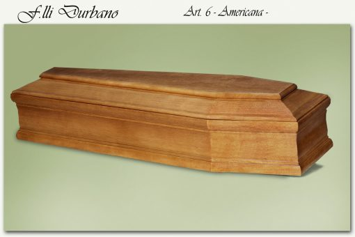 Art. 6 – American